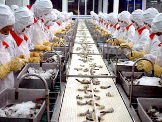 Kế hoạch bảo vệ môi trường cơ sở chế biến thực phẩm tươi sống